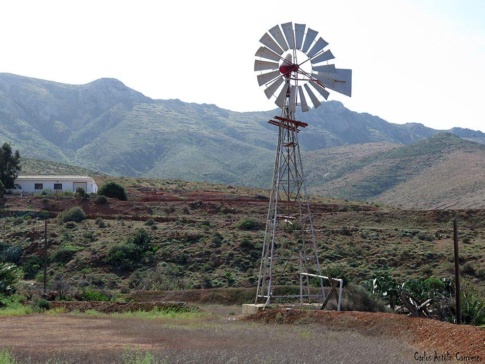 Vega de Río Palmas - Fuerteventura
