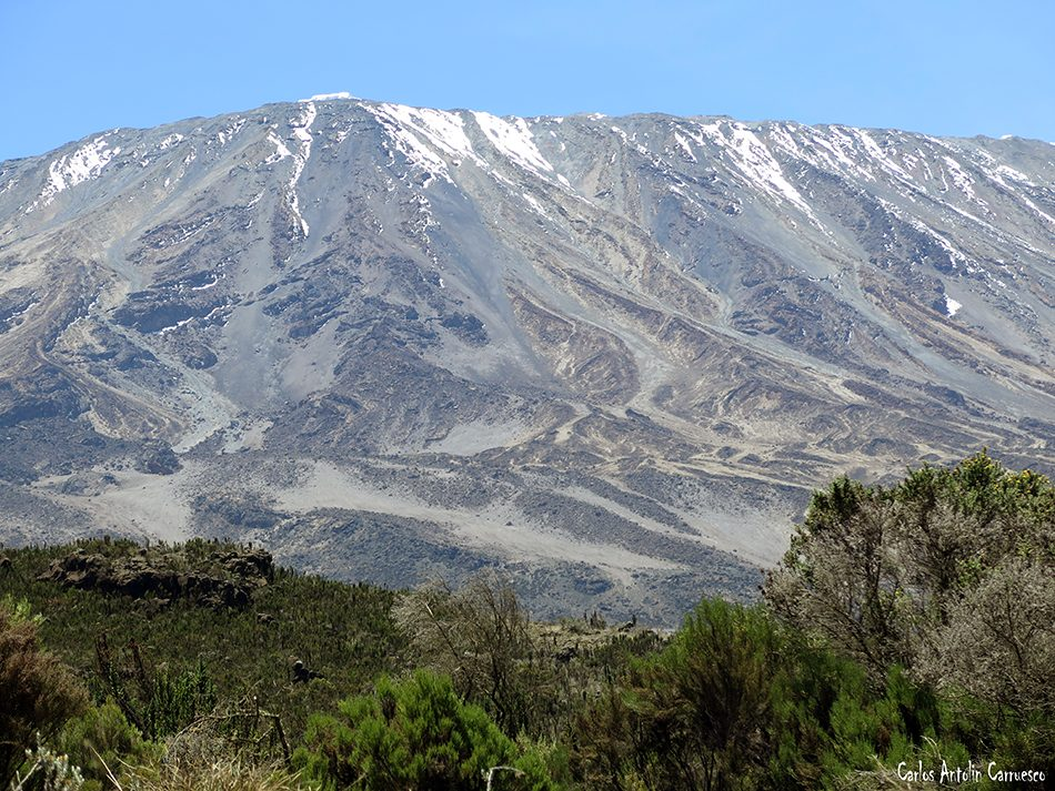 Simba Camp - Rongai - Volcán Kibo