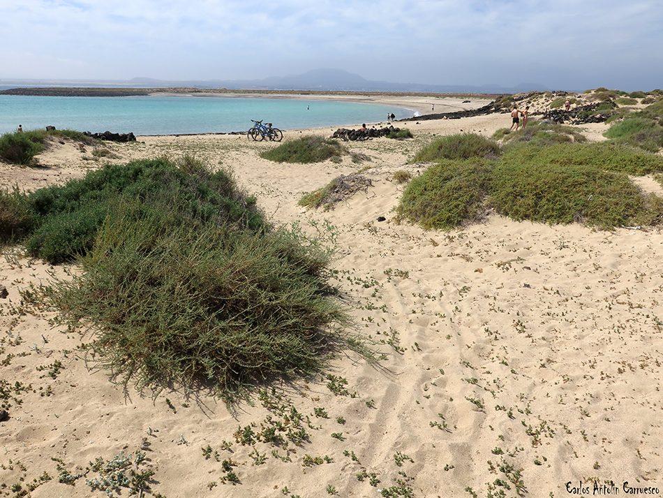 Islote de Lobos - Playa de La Calera - Fuerteventura