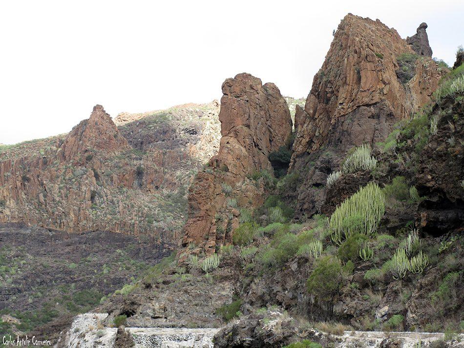 Seco - Teno - Tenerife - Risco Blanco