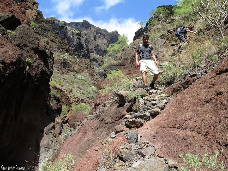 El Natero - Teno - Tenerife