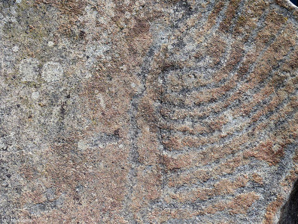Pico Bejenado - Taburiente - La Palma - Grabado rupestre del Lomo del Estrecho - Petroglifo