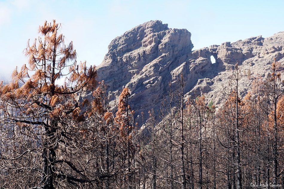 Puntón de La Agujerada - Pico de Las Nieves