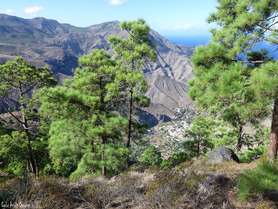 Faneque - Gran Canaria - el risco - tamadaba