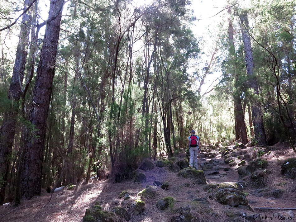 La Orotava - Camino Candelaria - Tenerife