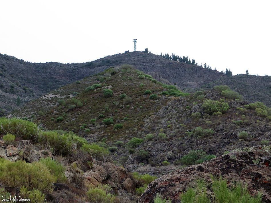 Madre del Agua - Masca - Tenerife - montaña de gala