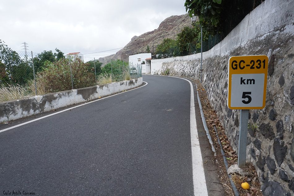 Casas del Camino - Agaete - Gran Canaria - gc231 - los berrazales