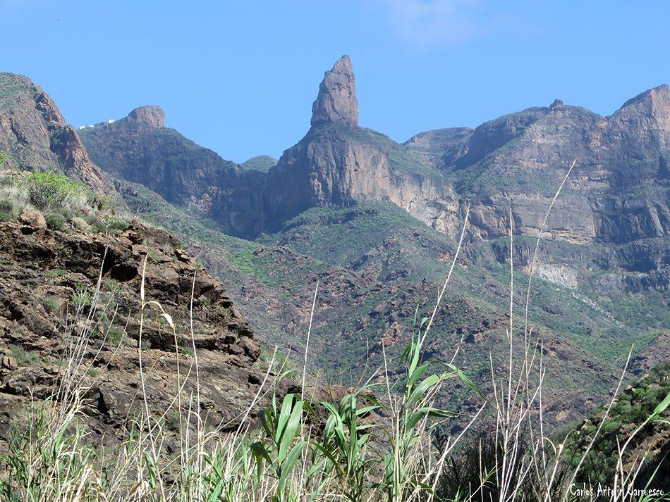 Barranco de Tejeda - Gran Canaria - palmes - roque palmes