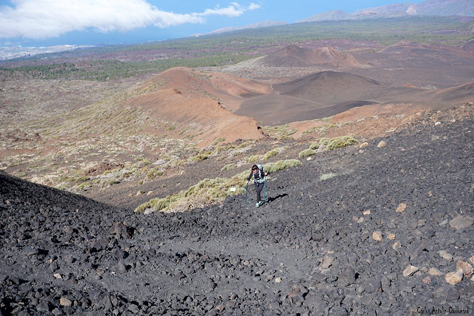 Sendero Número 9 - Tenerife