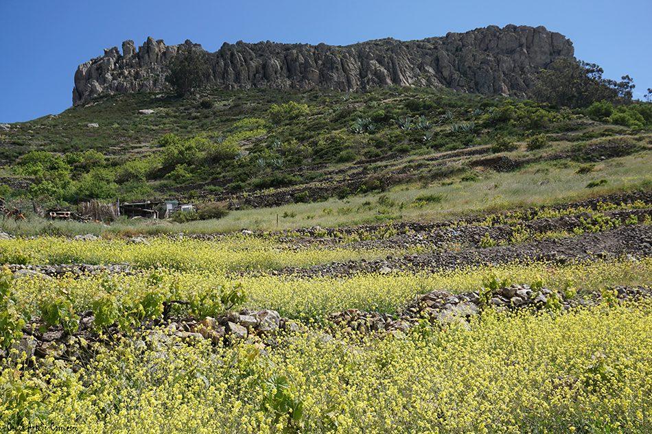 La Fortaleza de Chipude - Argoday - La Gomera
