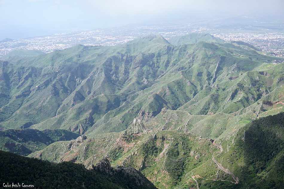 Pico del Inglés - Anaga - Tenerife