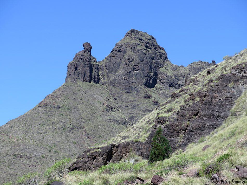 Juajorro - El Risco - Gran Canaria