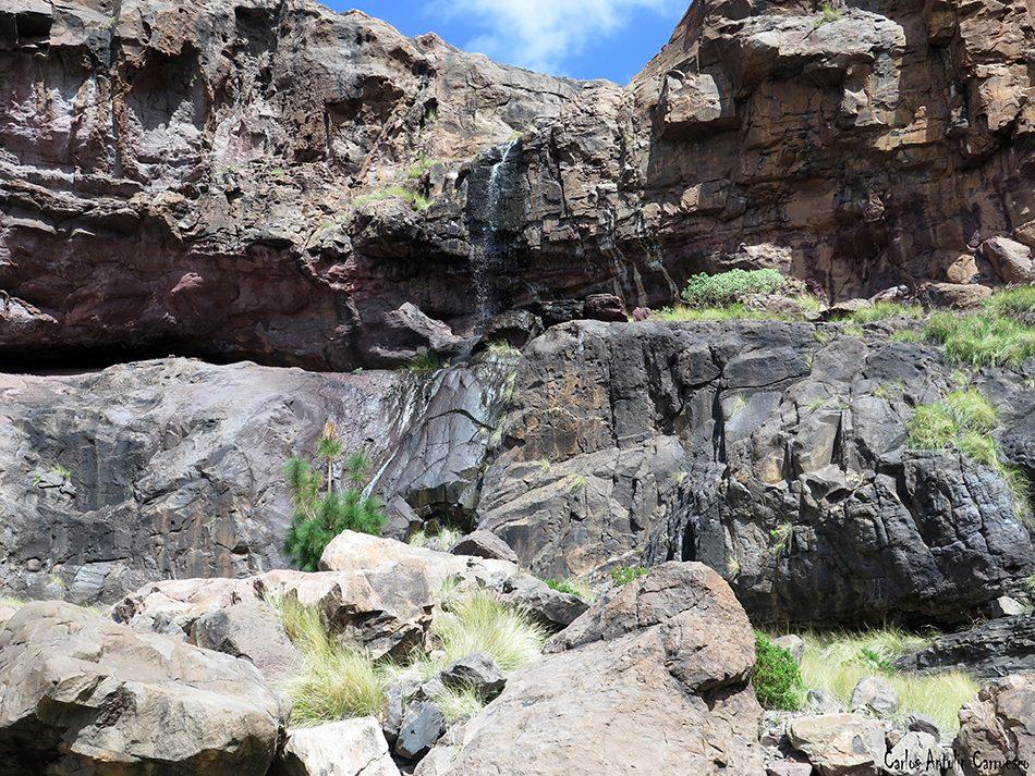 El Risco - El Palmar Inferior - Gran Canaria