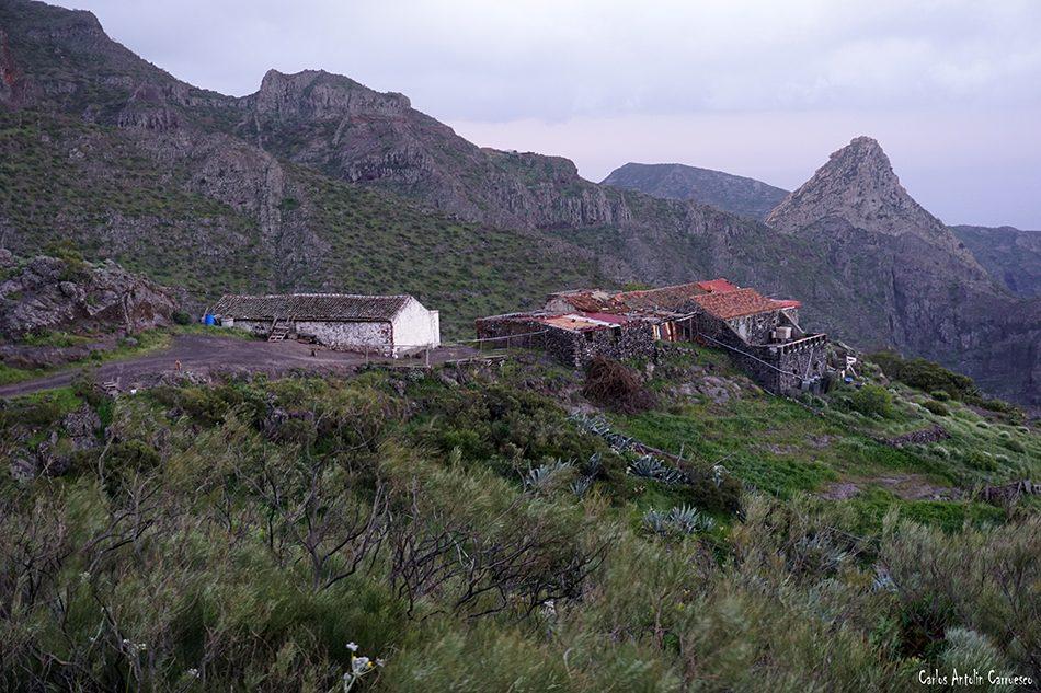 Guergues - Masca - Tenerife - araza - casas de araza