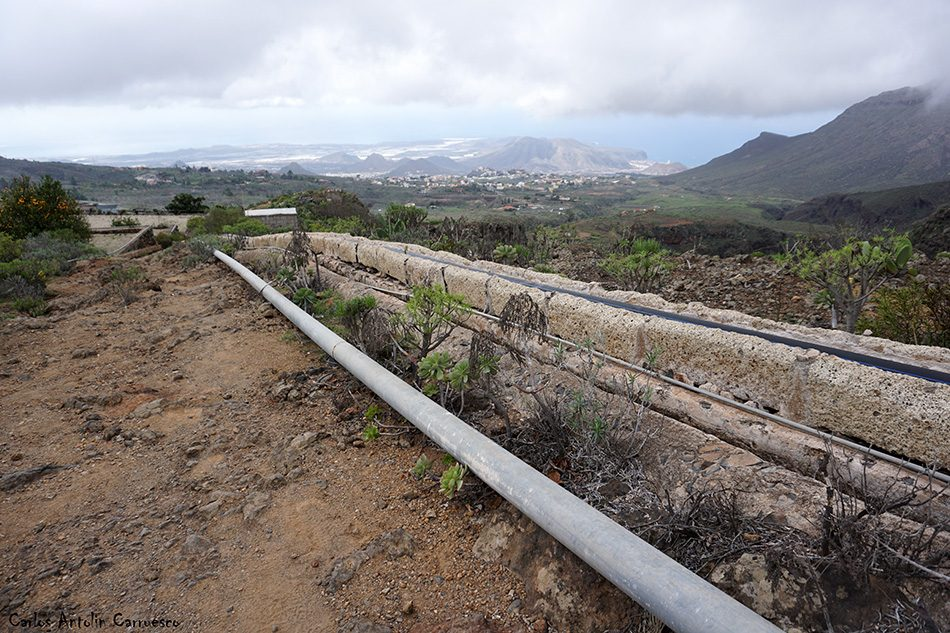 Ifonche - Tenerife - camino del topo