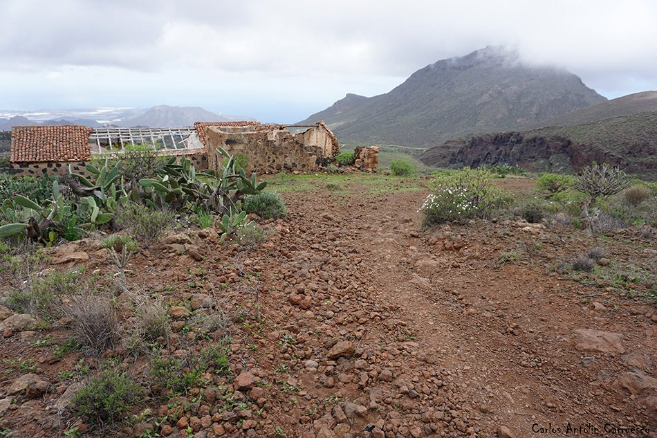Arona - Barranco del Rey - Tenerife
