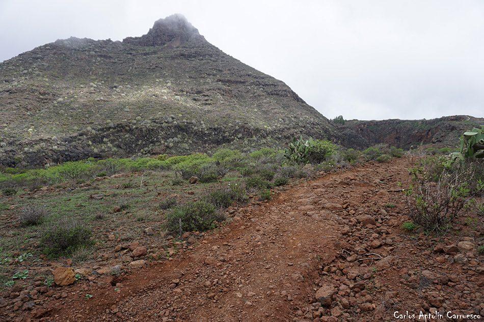 Arona - Barranco del Rey - Tenerife - ifonche