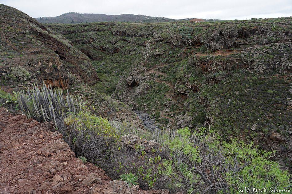 Barranco del Rey - Arona