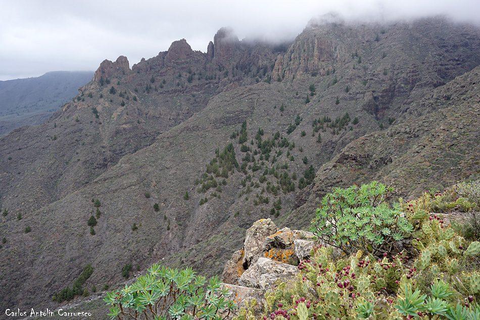 Degollada de Los Frailitos - Adeje - GR131 - Camino de Suarez - Tenerife