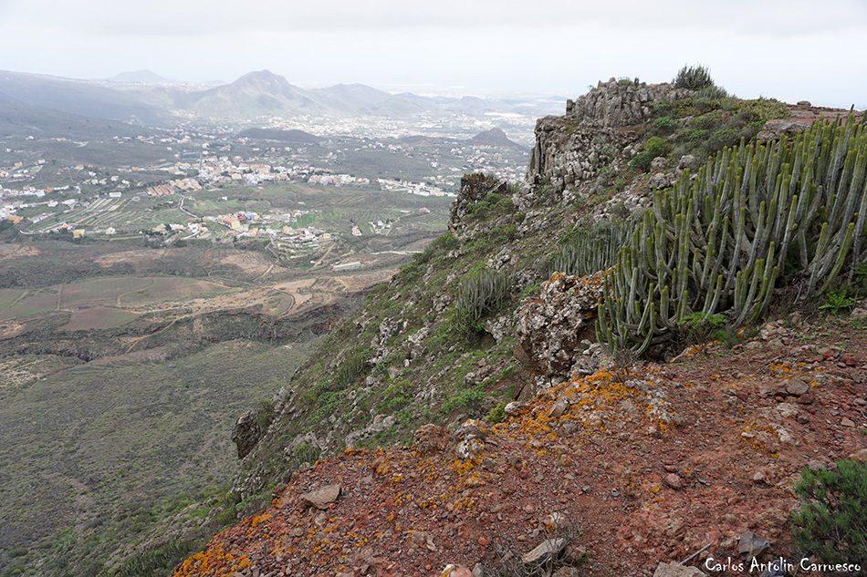Arona - Conde - Tenerife