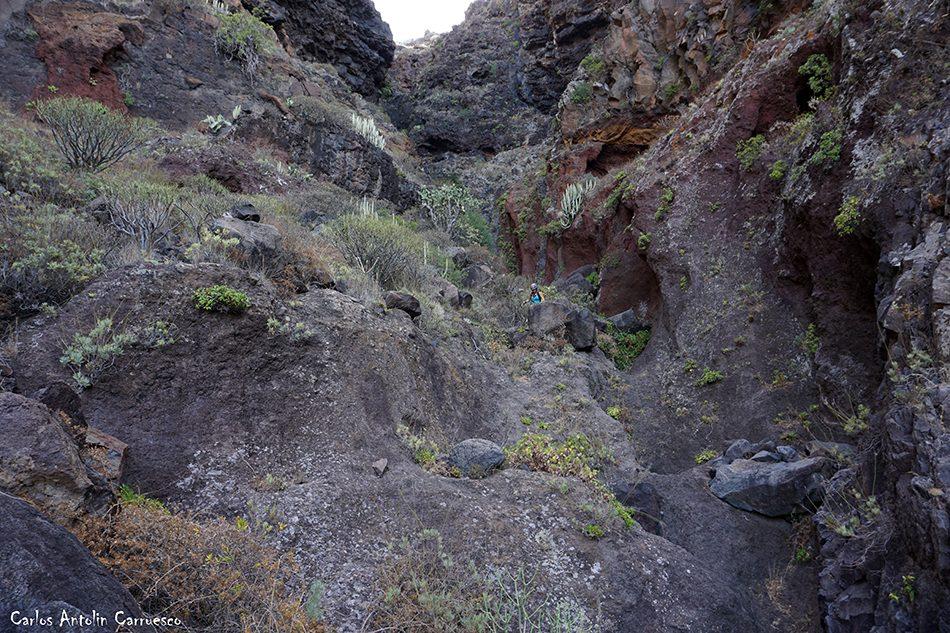 Roque Largo - Los Gigantes - Tenerife