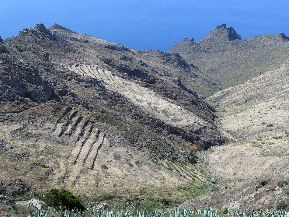 Teno - Tenerife - los garañones