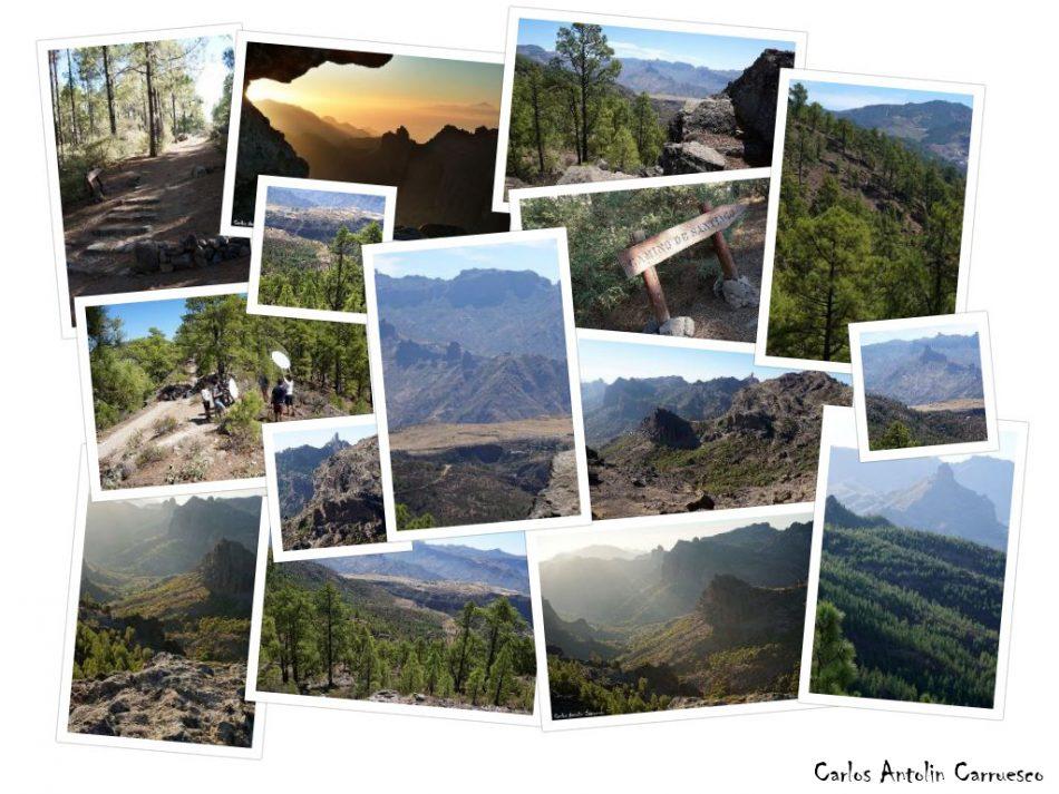 Día 1 - Parque Natural de Tamadaba + Ventana del Nublo