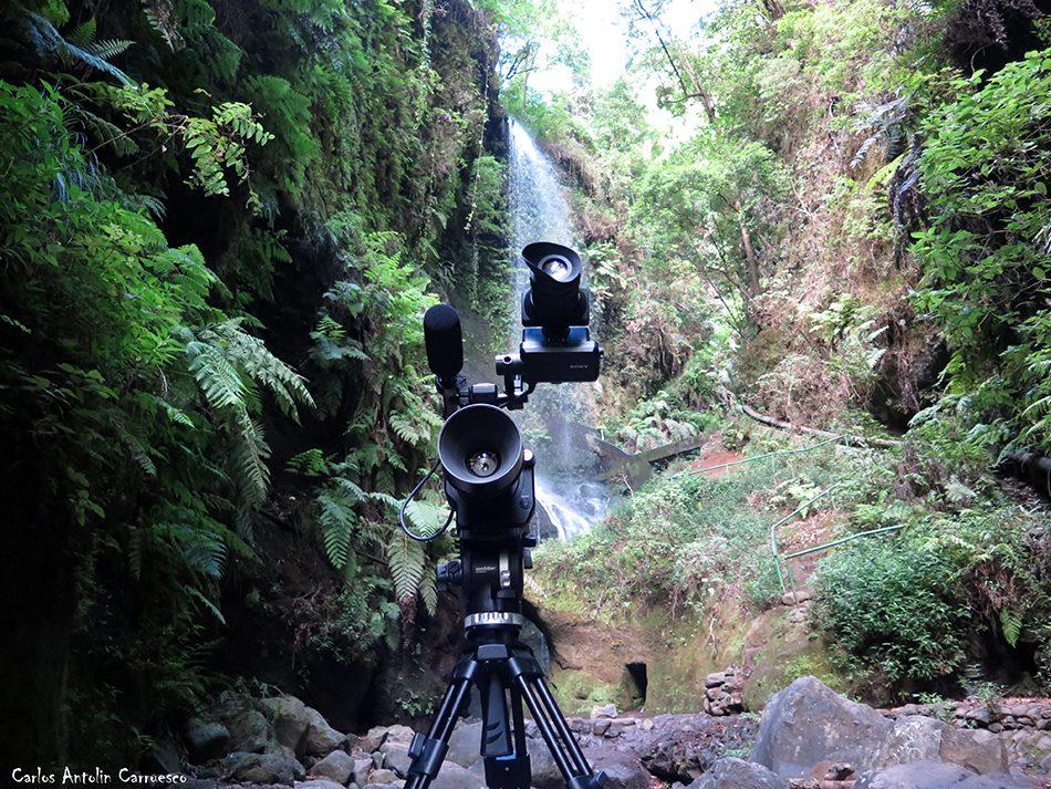 Cascada del Mulato - Los Tilos - La Palma