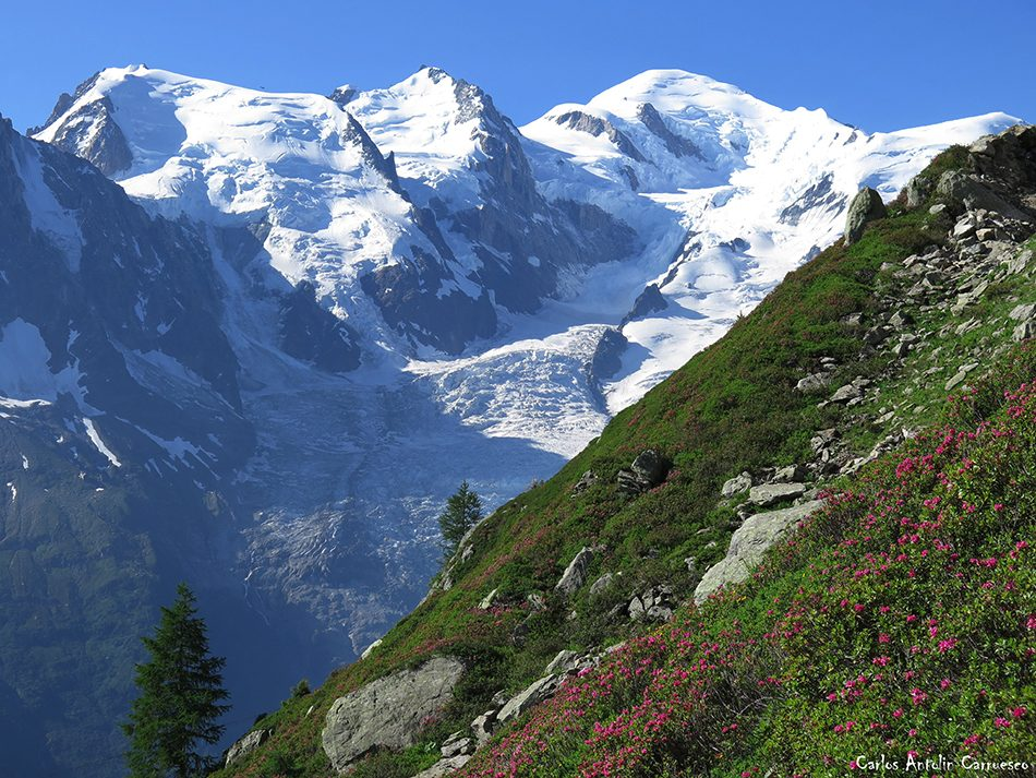 Chamonix - Planpraz - Le Brévent