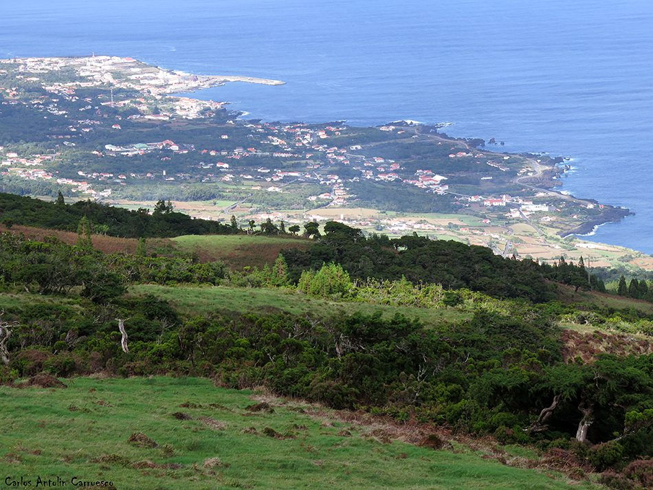 Pico - São Roque do Pico - Azores